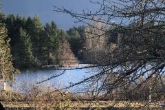 30-back-small-lake-view