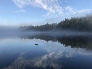 foggy long lake in nanaimo with red bouy in distance