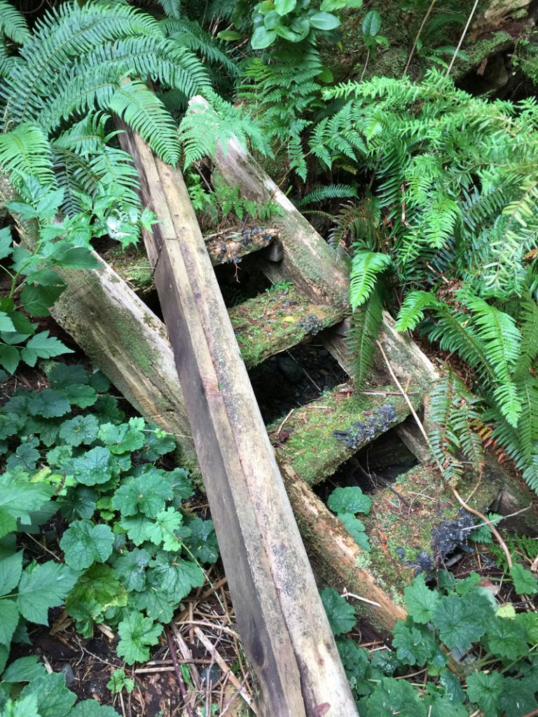Exploring surrounding areas of Vancouver Island