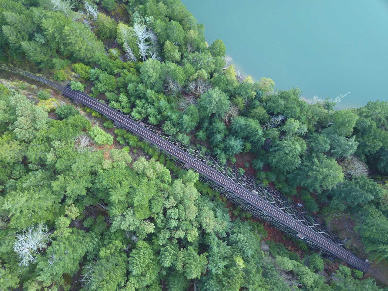 Aerial view of train tracks and forest west coast Canada