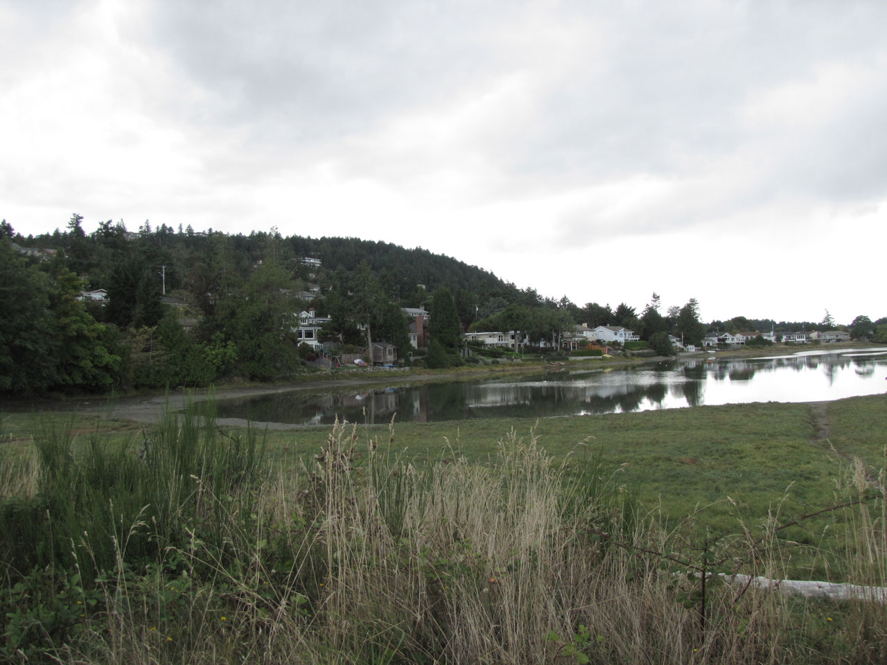 Water surrounded by green grass and tress with homes in the distance