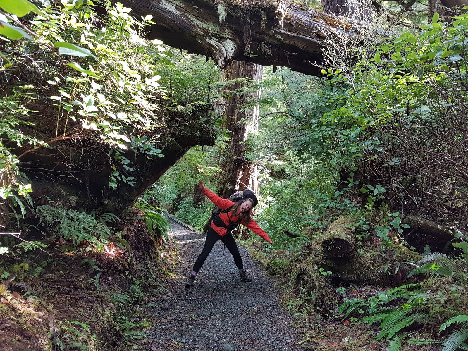 Woman wearing backpack exploring surrounding areas ofVancouver Island rainforest
