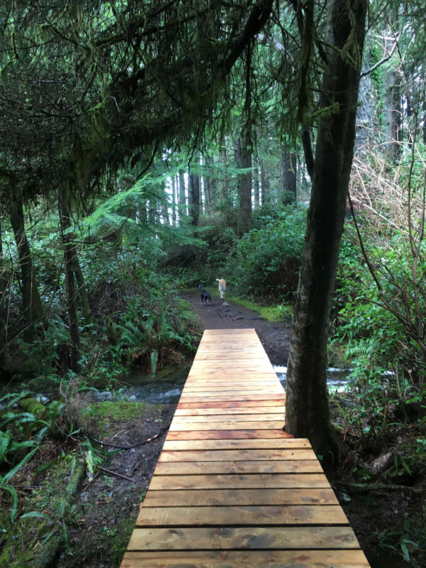 South Island hiking trails Vancouver Island, BC Canada