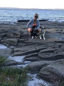 Top 5 Nanaimo Dog Friendly Hikes & Off Leash Areas - Lakeview Rental