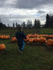 A child filled with excitement while checking out all the pumpkins at the farm